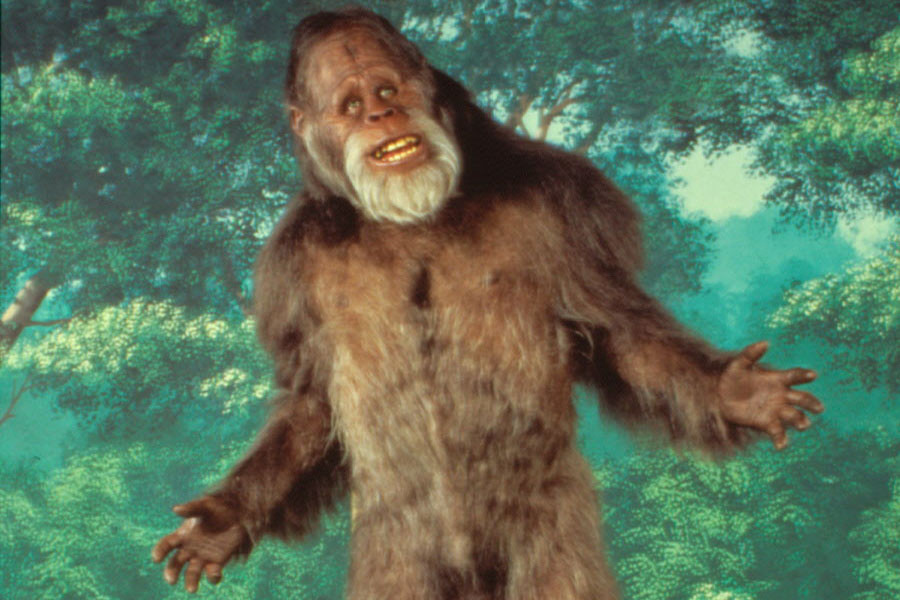 Wow! Thanks For The First Donation, Anonymous. Bigfoot Furry Blessings To  You!
