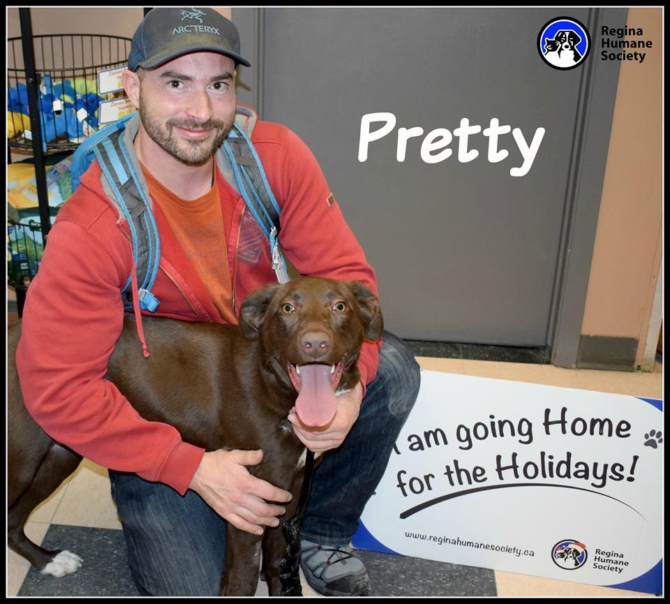 Fundraiser by Karen Mercier : Help Save Pretty's Leg