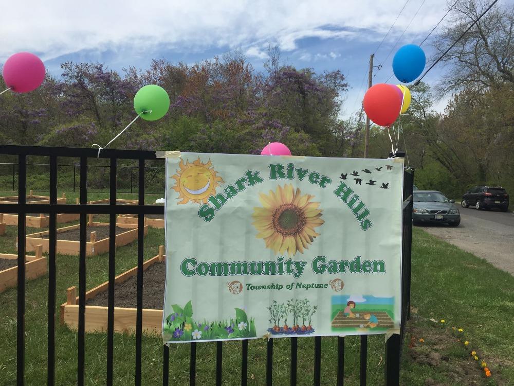 Fundraiser by Rose Burtnick : HELP OUR GARDEN GROW