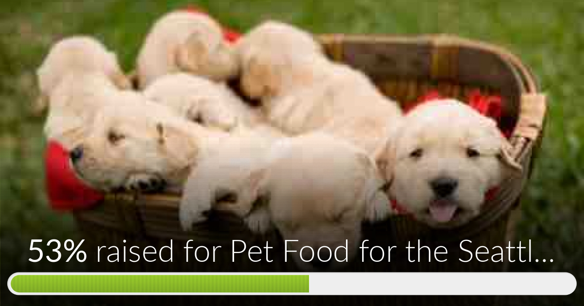 Fundraiser for Fangying Shi by Sophia Li : Pet Food for the